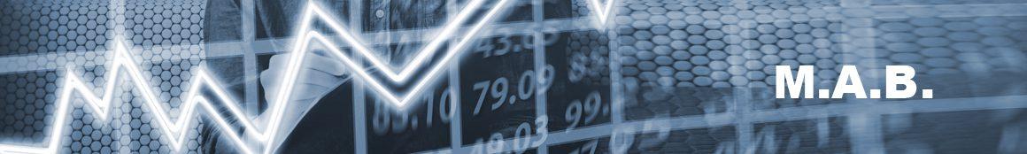 Monitoraggio Attività di Bilancio